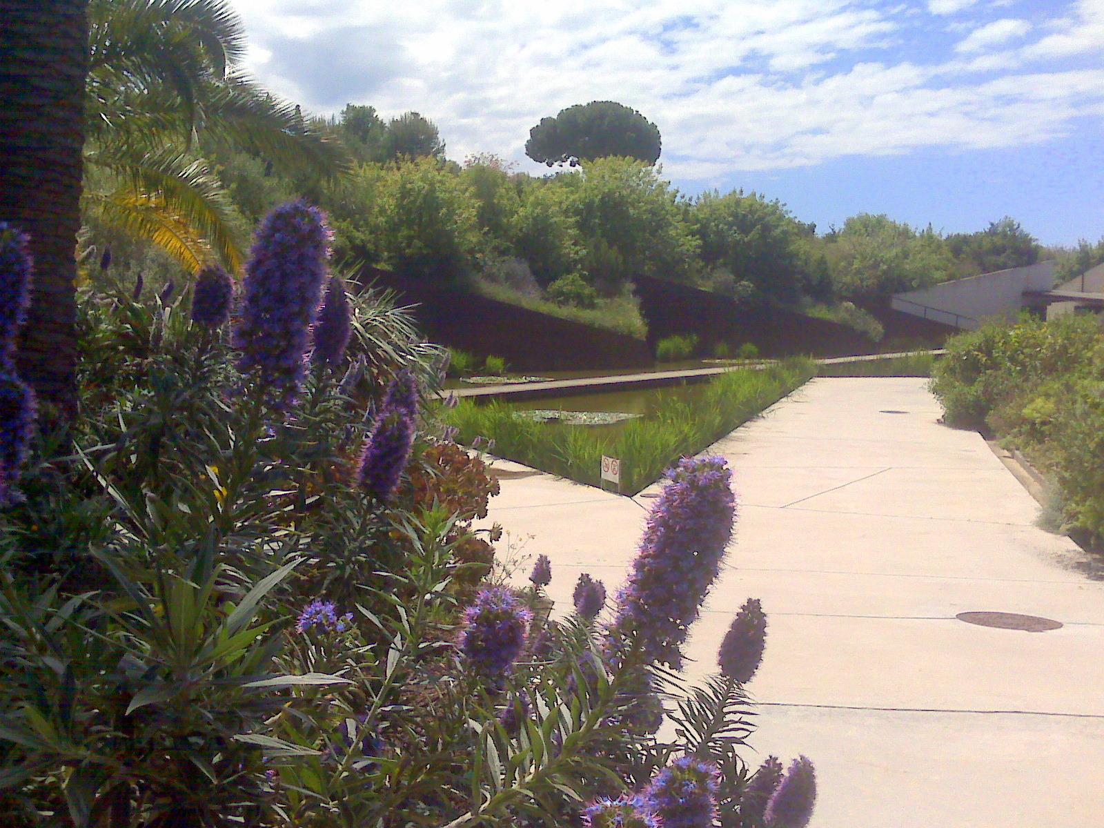 Espagne la passion des jardins et de la nature for Jardin botanique barcelone
