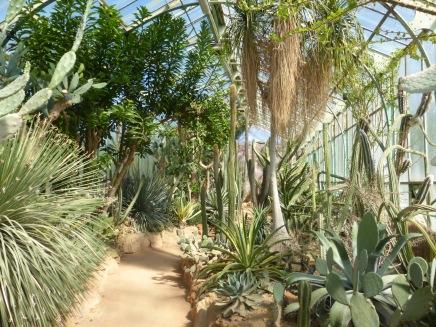 Serre de climat semi désertique