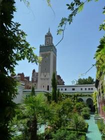 Jardin de la grande mosquée de Paris 3