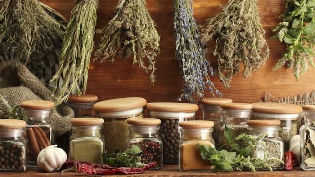 Phytothérapie-et-les-herbes-710x400